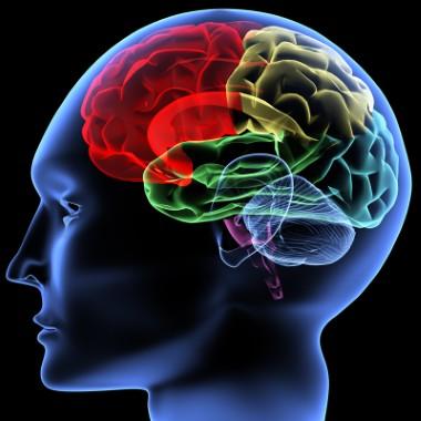 Gehirnwellen Einstimmungen