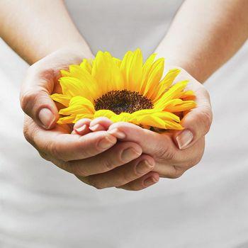 Vergebung, befreie dich von Schuld, Scham, Wut und mehr